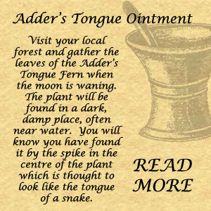 Adders Tongue Remedy